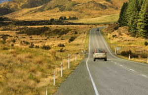 cruzando carretera